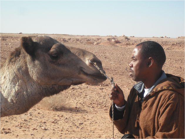 Le docteur vétérinaire Baaissa Babelhadj a découvert la