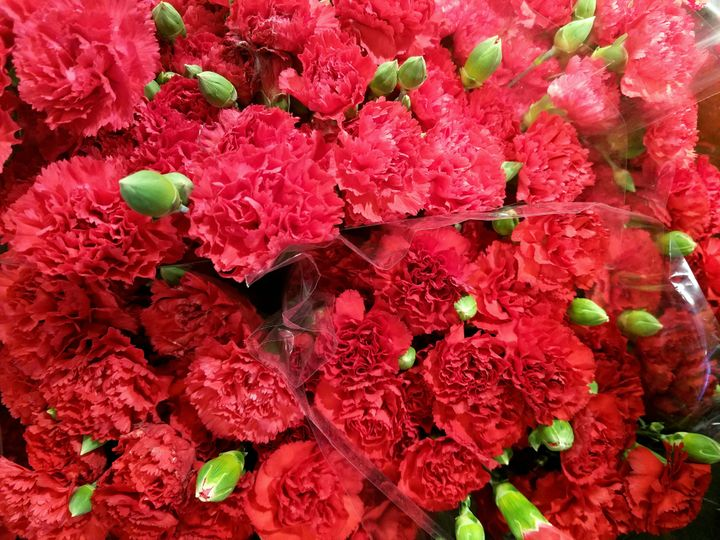 Red carnations tend to be the flower of choice for Mother's Day in Japan.