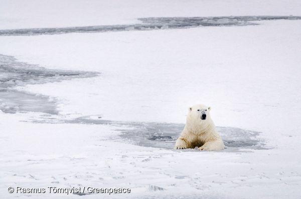 기후변화의 영향으로 녹아내리는