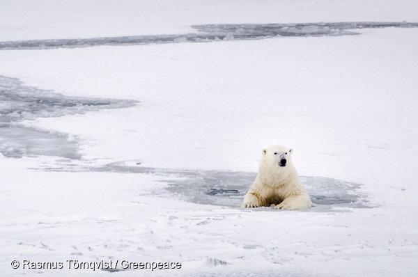 세계 정상들이 '기후변화'에 신경 쓰는 5가지