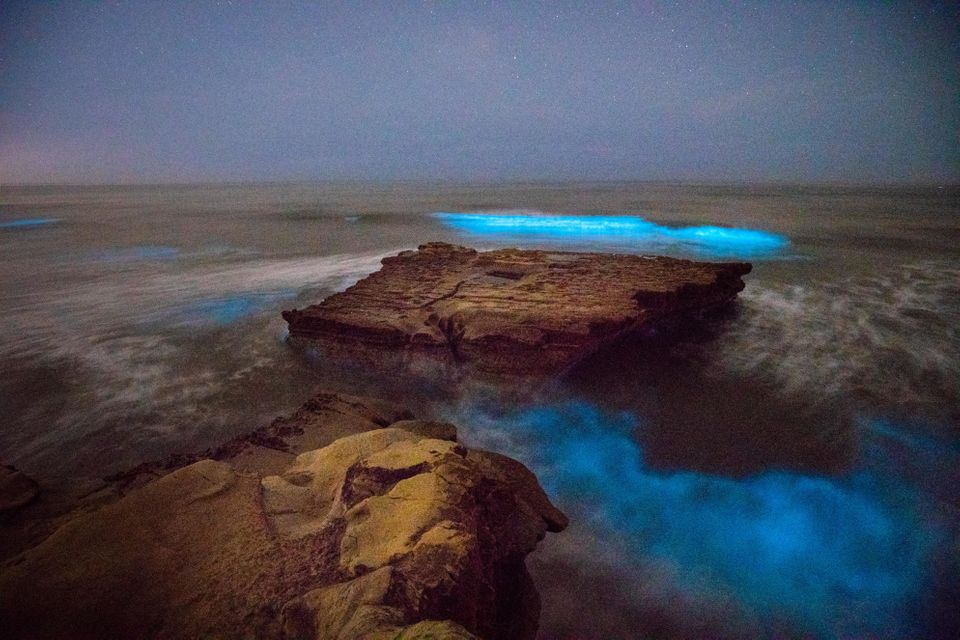 Red Tide Produces Gorgeous, Glowing Waves Off The California