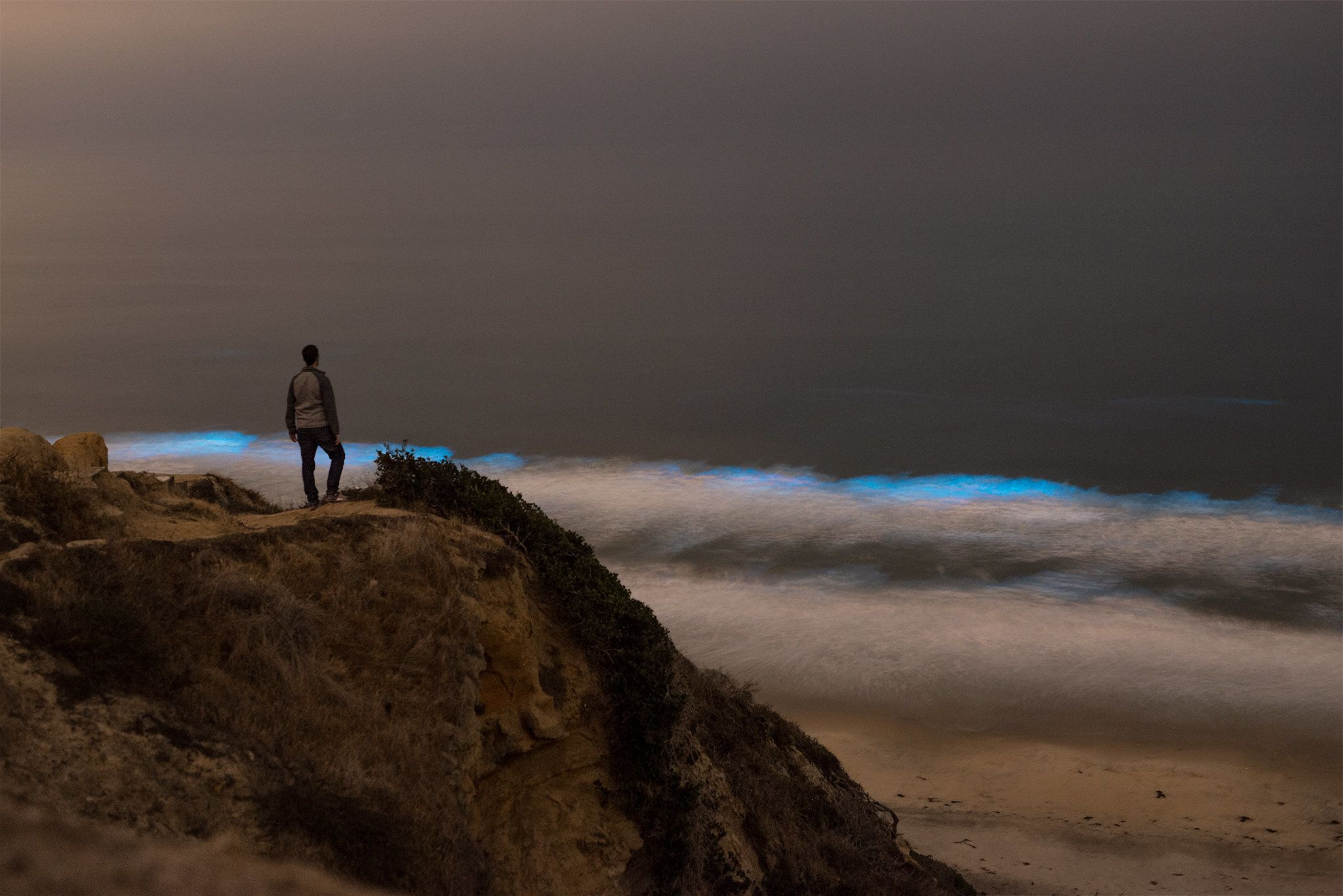 San Diego surf turns electric blue