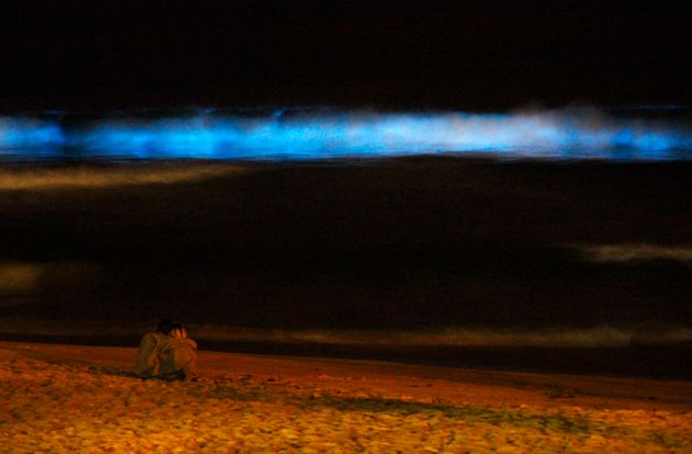 Oι παραλίες στην Καλιφόρνια έγιναν μπλε. Ένα μοναδικό φαινόμενο που αναδεικνύει το μεγαλείο της