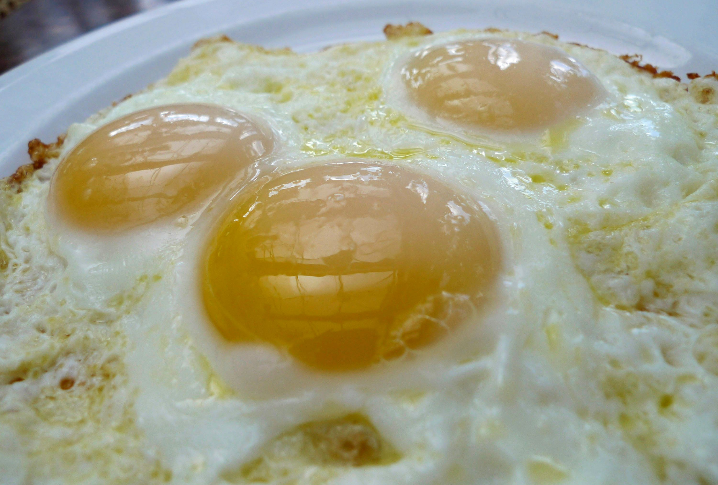 A plate of fried eggs are pictured at a Washington cafe, August 23, 2010. The U.S. Food and Drug Administration commissioner on Monday said there may be more recalls of eggs in the salmonella outbreak and the agency did not yet know how the eggs and chickens were contaminated.    REUTERS/Jason Reed   (UNITED STATES - Tags: FOOD HEALTH)