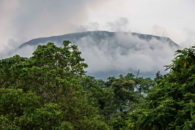 A view from the plains of Mount Nyiragongo in the Virunga National