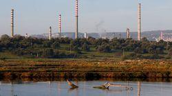Le sol de la raffinerie italienne rachetée par Sonatrach contaminé, selon une association