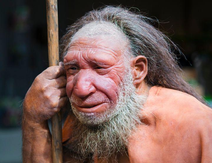 Φιγούρα Νεάντερταλ από το Μουσείο Neanderthal στο Mettmann της Γερμανίας.