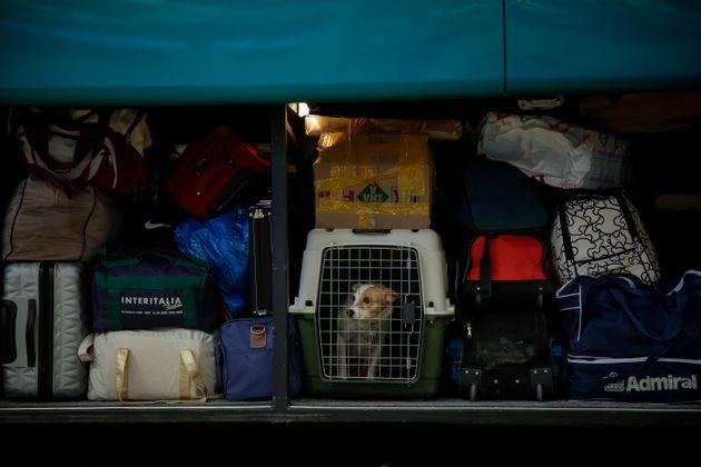 Απίστευτο: Κρητικός πολιτικός παράγοντας κλείστηκε στο πορτμπαγκάζ λεωφορείου του