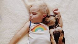 35 Adorable Photos Of Dogs And Babies Just