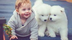 당신을 흐뭇하게 할 귀여운 아기와 반려견 사진