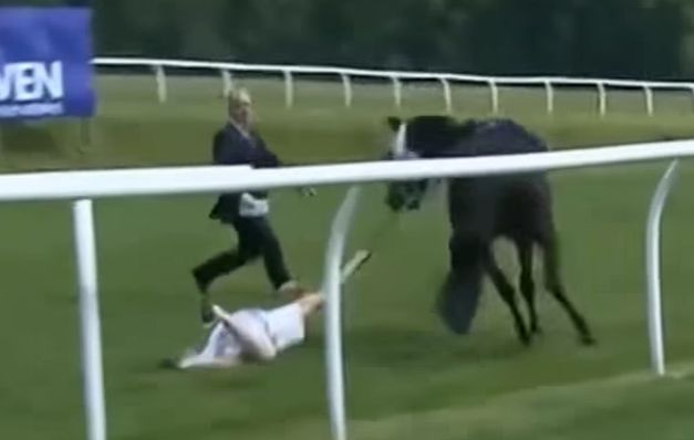 TV Presenter Hayley Moore Tackles Runaway Horse At Chepstow In 'Partridge'-Esque