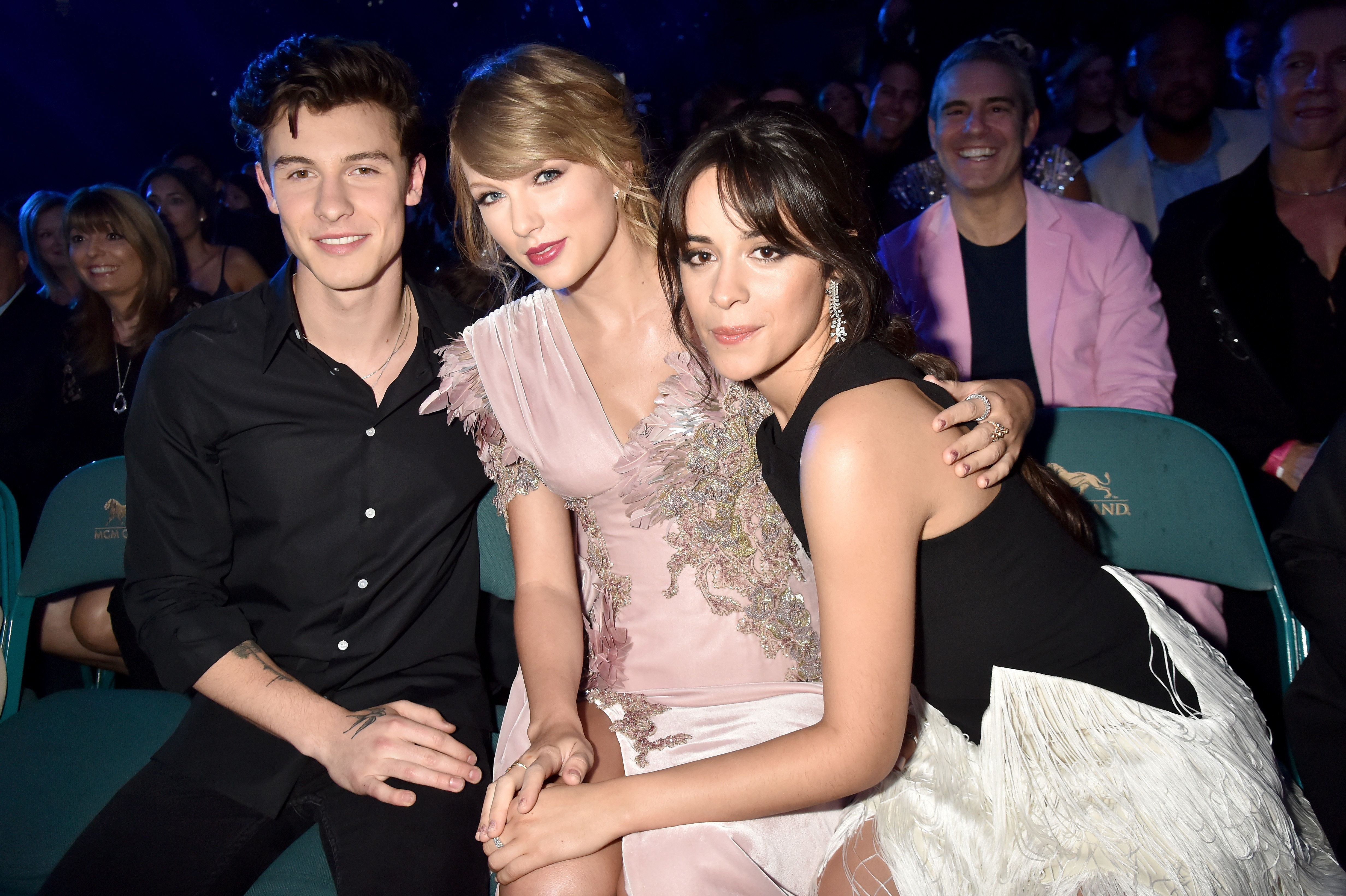 Shawn Mendes, Taylor Swift, Camila Cabello -- and look who's photobombing on the right.