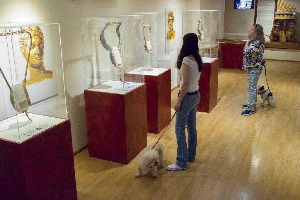 Ένα pet- friendly μουσείο στο κέντρο της Αθήνας: 1-3 Ιουνίου στο Μουσείο Αρχαίας Ελληνικής Τεχνολογίας Κώστα