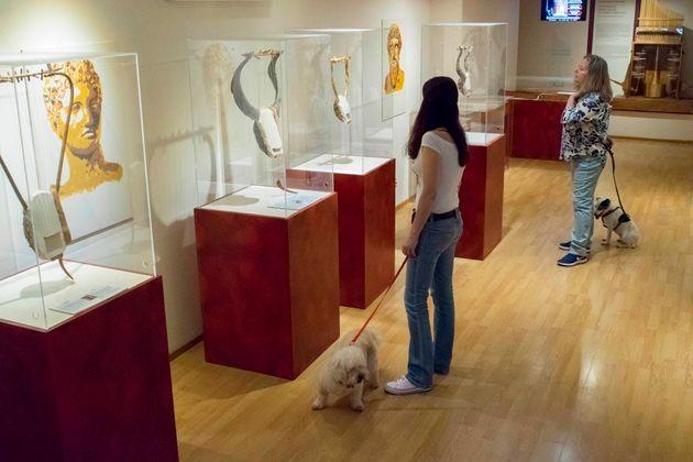 Ένα pet- friendly μουσείο στο κέντρο της Αθήνας: 1-3 Ιουνίου στο Μουσείο Αρχαίας Ελληνικής Τεχνολογίας...
