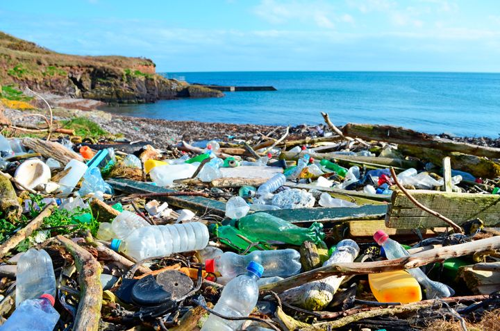 The European Union has proposed a ban of several types of single-use plastics, including straws, disposable cutlery and plate