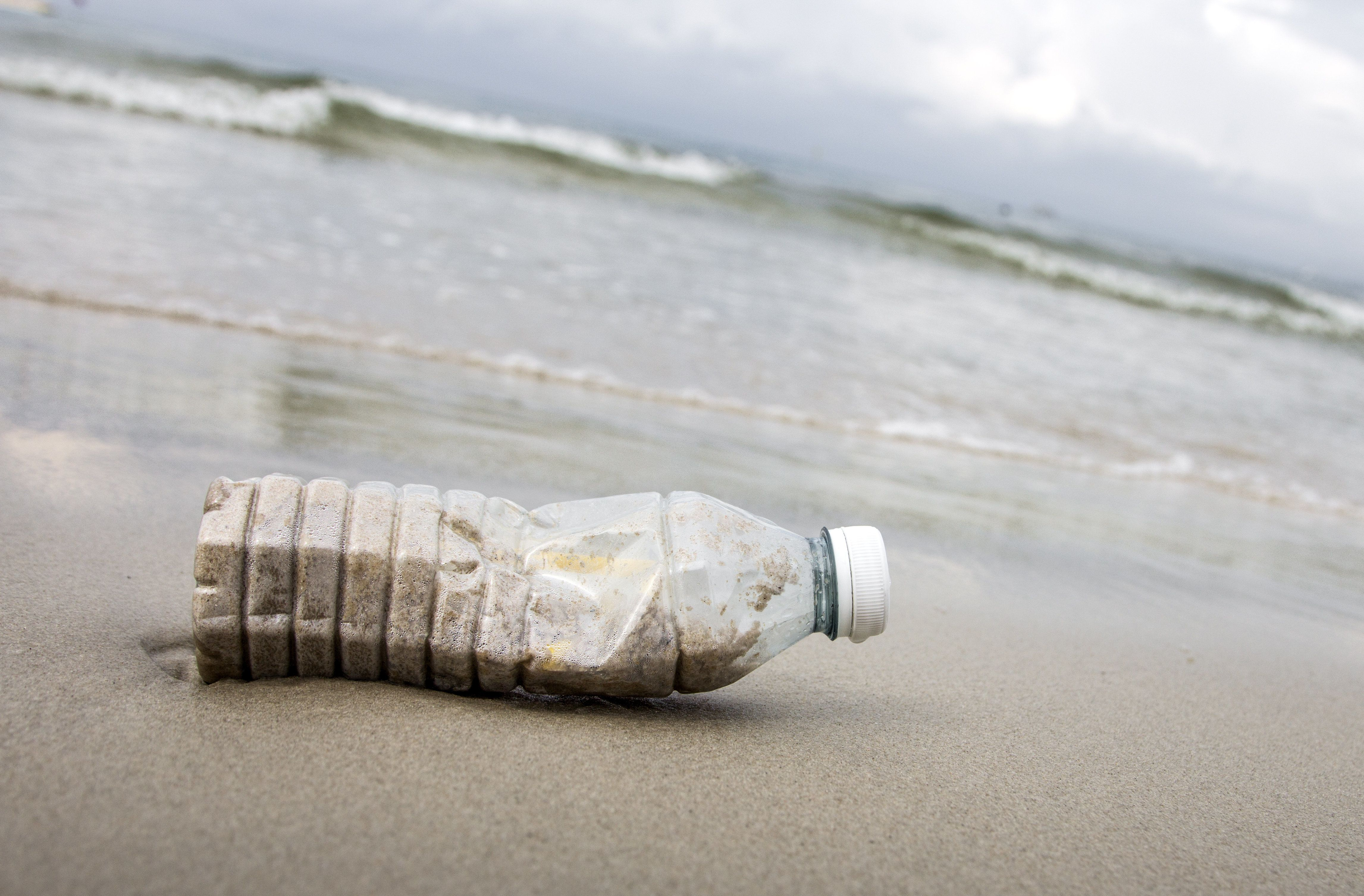 Is Your Beach Full Of Rubbish? Here's What You Can Do About