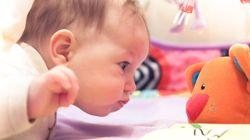 Kuscheltier fürs Baby: Darauf solltet ihr bei Spielzeug achten