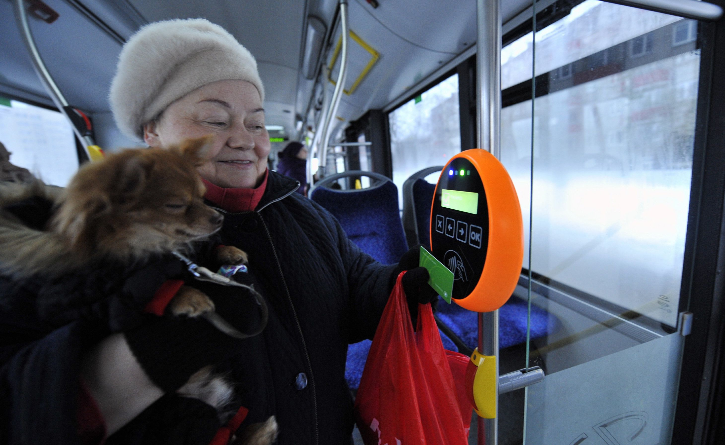 A woman holds her dog while she holds a green special card to a reading device in a bus in Tallinn, on January 9, 2013. From January 1, 2013,  residents of the Estonian capital can use public transports in Tallinn for free after purchasing a special card for 2 euros. AFP PHOTO / RAIGO PAJULA        (Photo credit should read RAIGO PAJULA/AFP/Getty Images)