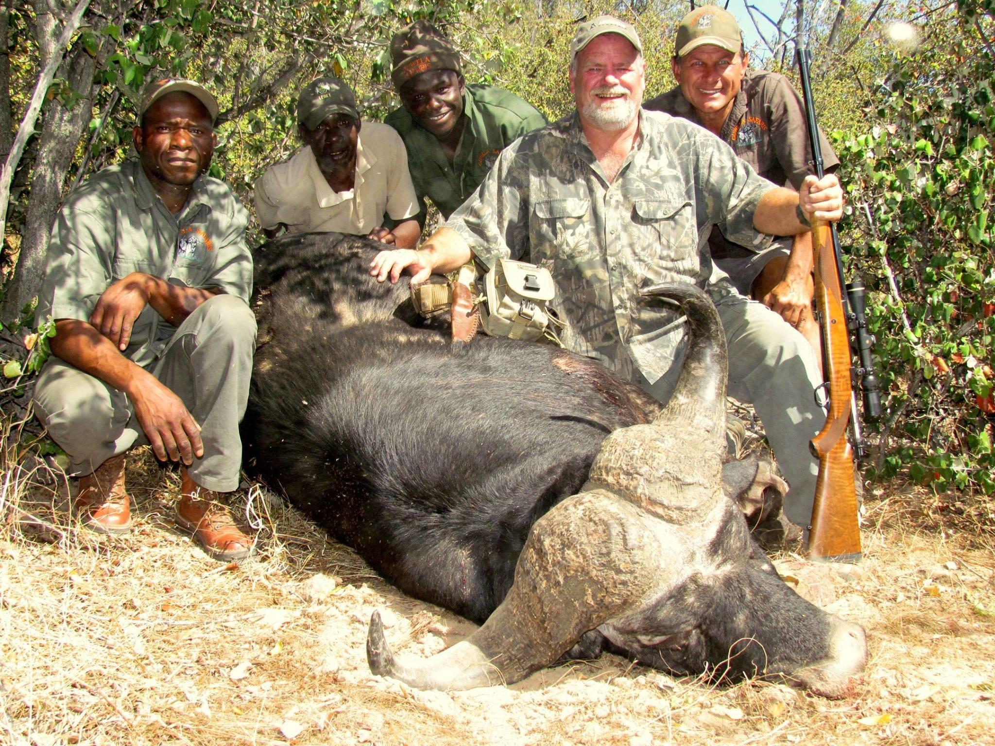 Großwildjäger tötet Büffel – dann rächt ein Artgenosse seinen verstorbenen Freund