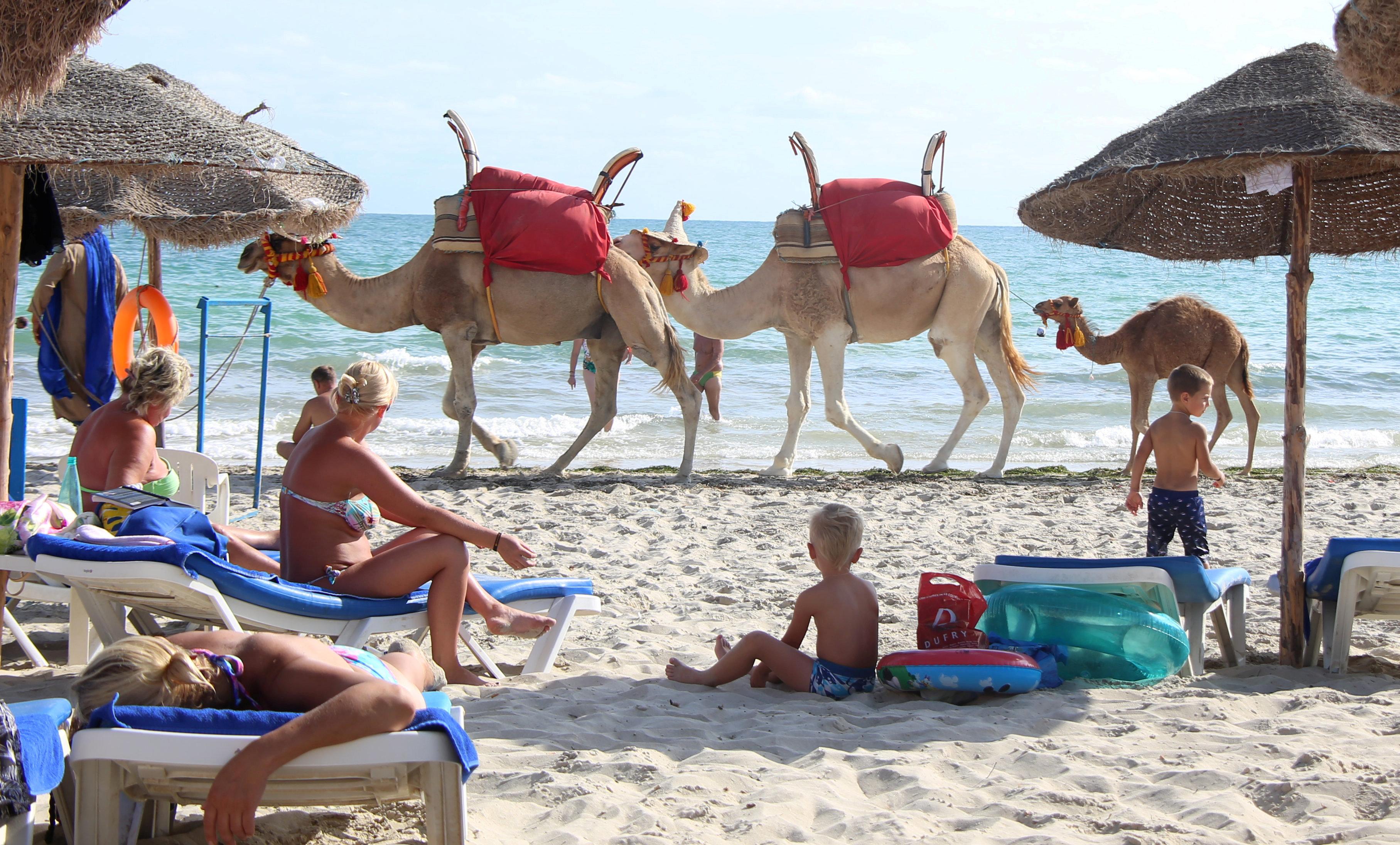 Les réservations des touristes français vers la Tunisie