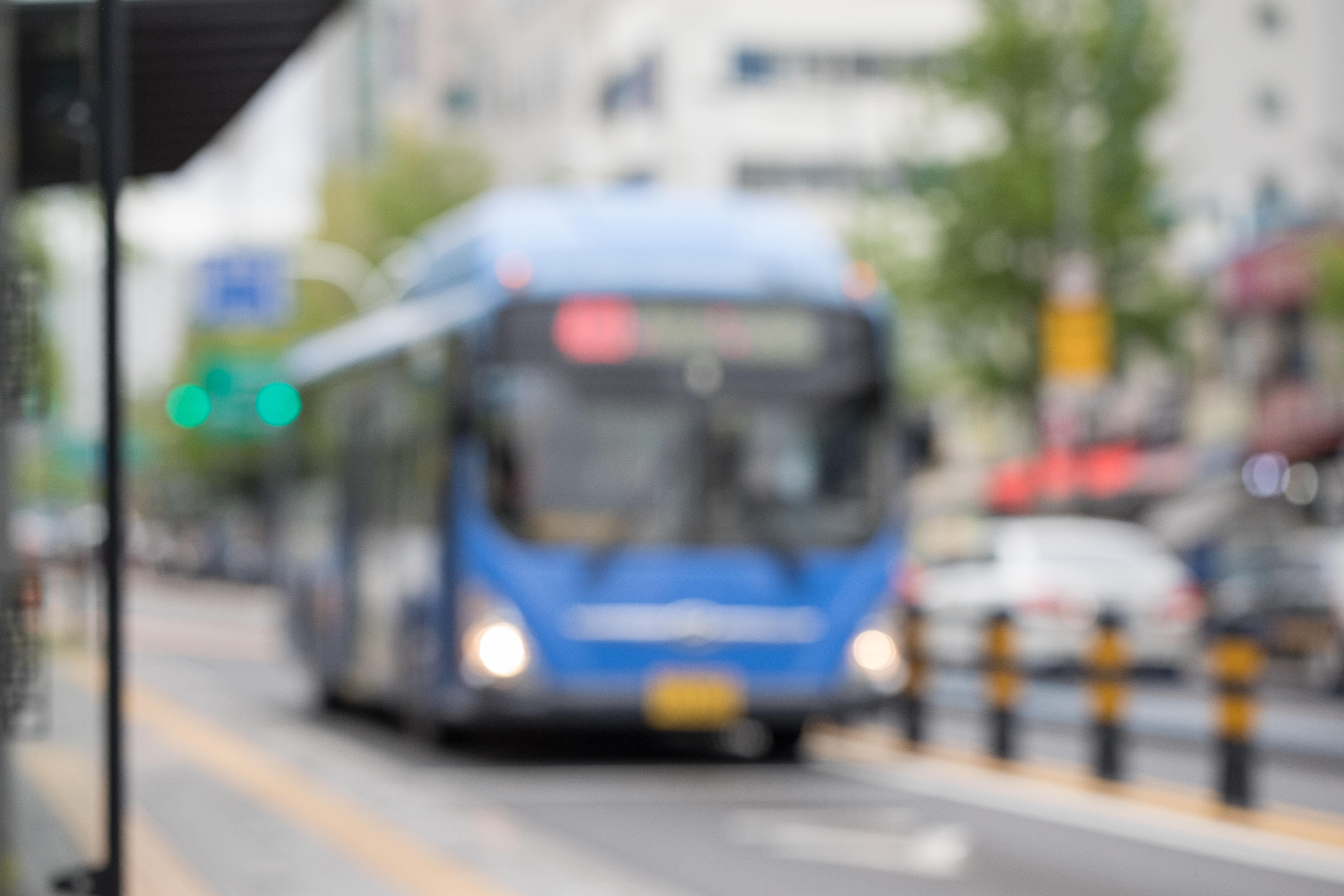 한국 버스기사 이야기는 영화 '패터슨'과 정반대였다