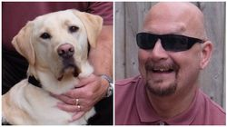 Before I Got My Guide Dog I Was Too Scared To Open My Front Door - He's Changed My Life