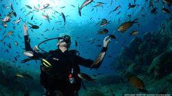Ένα θαλάσσιο καταφύγιο στη Σαντορίνη γίνεται πραγματικότητα από τη Healthy Seas και τους δύτες του