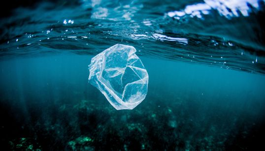 5 Easy Ways To Cut Down Your Plastic Bag