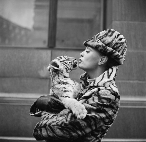 Stewardess Cynthia Robertson holds a Bengal tiger cub while modeling the new synthetic tiger fur uniform for National Airline
