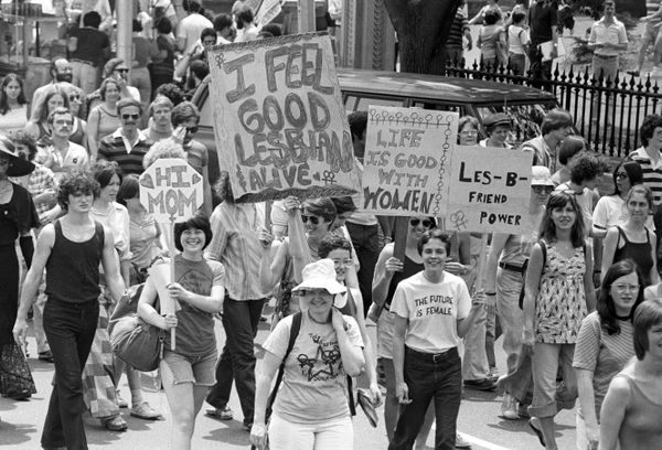 View of the large crowd, some of whom are holding up handmade signs and banners, participating in a gay and lesbian Pride par