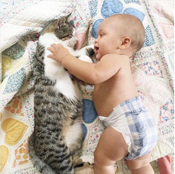35 Precious Photos Of Cats And Babies Just Because