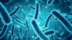 Οι επιστήμονες χαρτογραφούν το γονιδίωμα 3.000 βακτηρίων, για την καταπολέμηση των ανθεκτικών στα φάρμακα