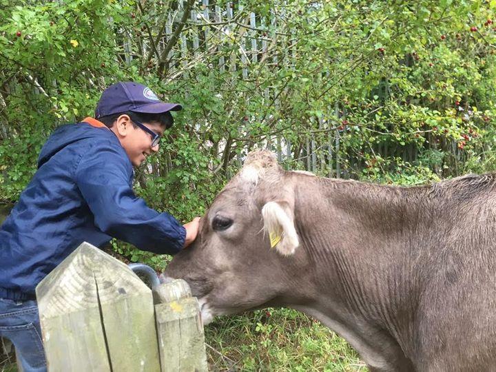 Dhani Gajjar, 11, helps out on a local farm.