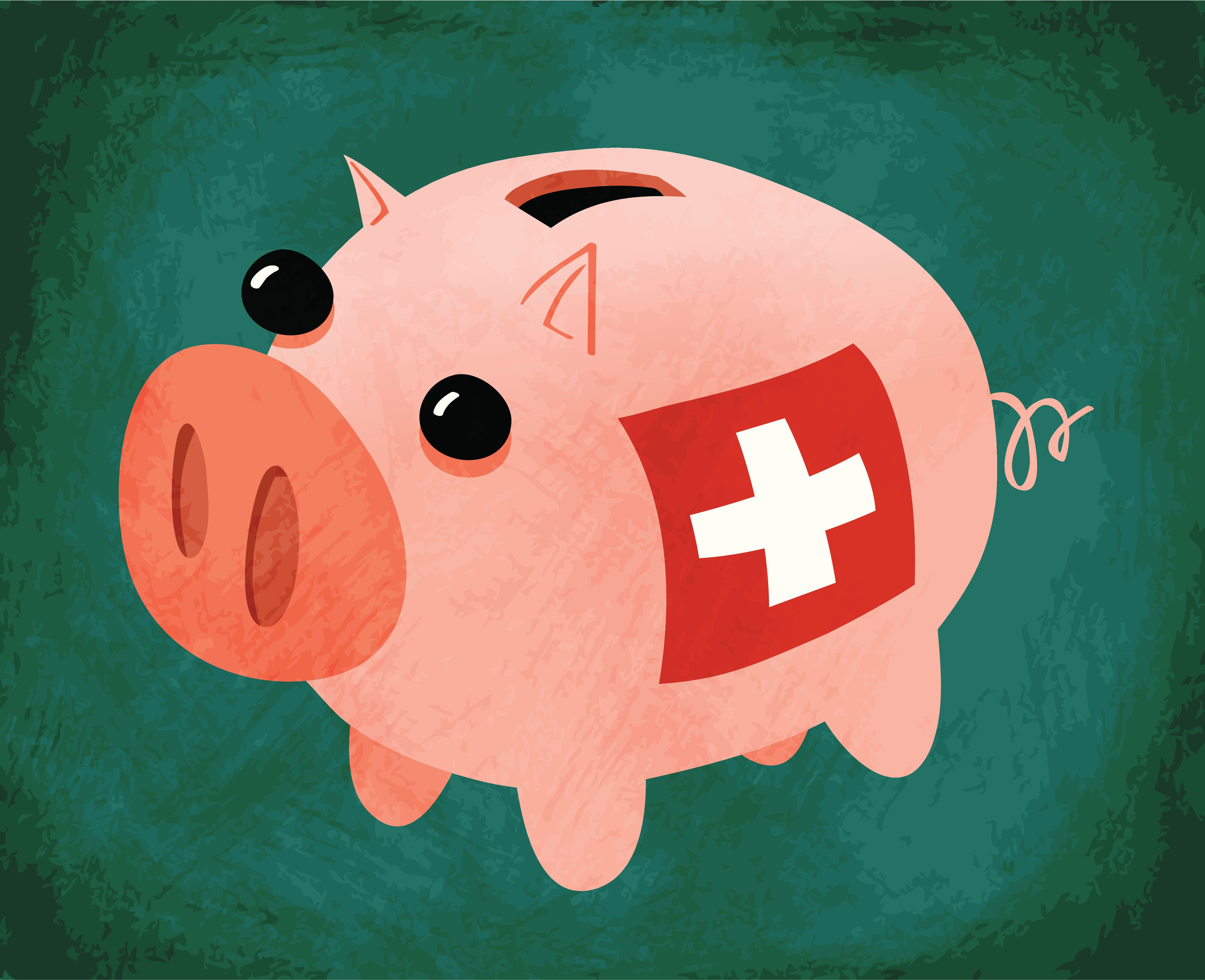 Switzerland Is Mulling A Radical Plan To Rip Power Away From Big