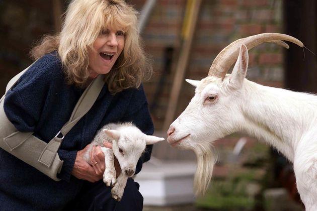TV scriptwriter Carla Lane at her animal sanctuary in Horsted Keynes, West