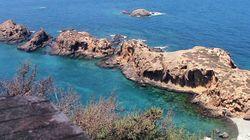 Oran : un filet de 800 mètres cause des dégâts écologiques près des Iles