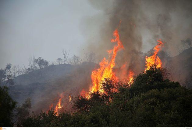 Πυρκαγιά σε δασική έκταση στην περιοχή Άρμα