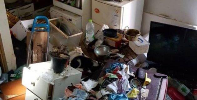 쓰레기 가득한 집에서 백골 상태의 개 사체 4구가