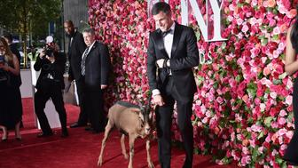 NEW YORK, NY - JUNE 10: Sparky the goat (L) attends the 72nd Annual Tony Awards on June 10, 2018 in New York City.  (Photo by Steven Ferdman/Patrick McMullan via Getty Images)