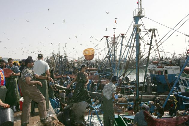Des pêcheurs dans le port de Laâyoune au