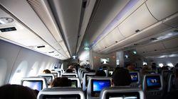 Airline erteilt Mann lebenslanges Flugverbot – wegen seiner Begleitung