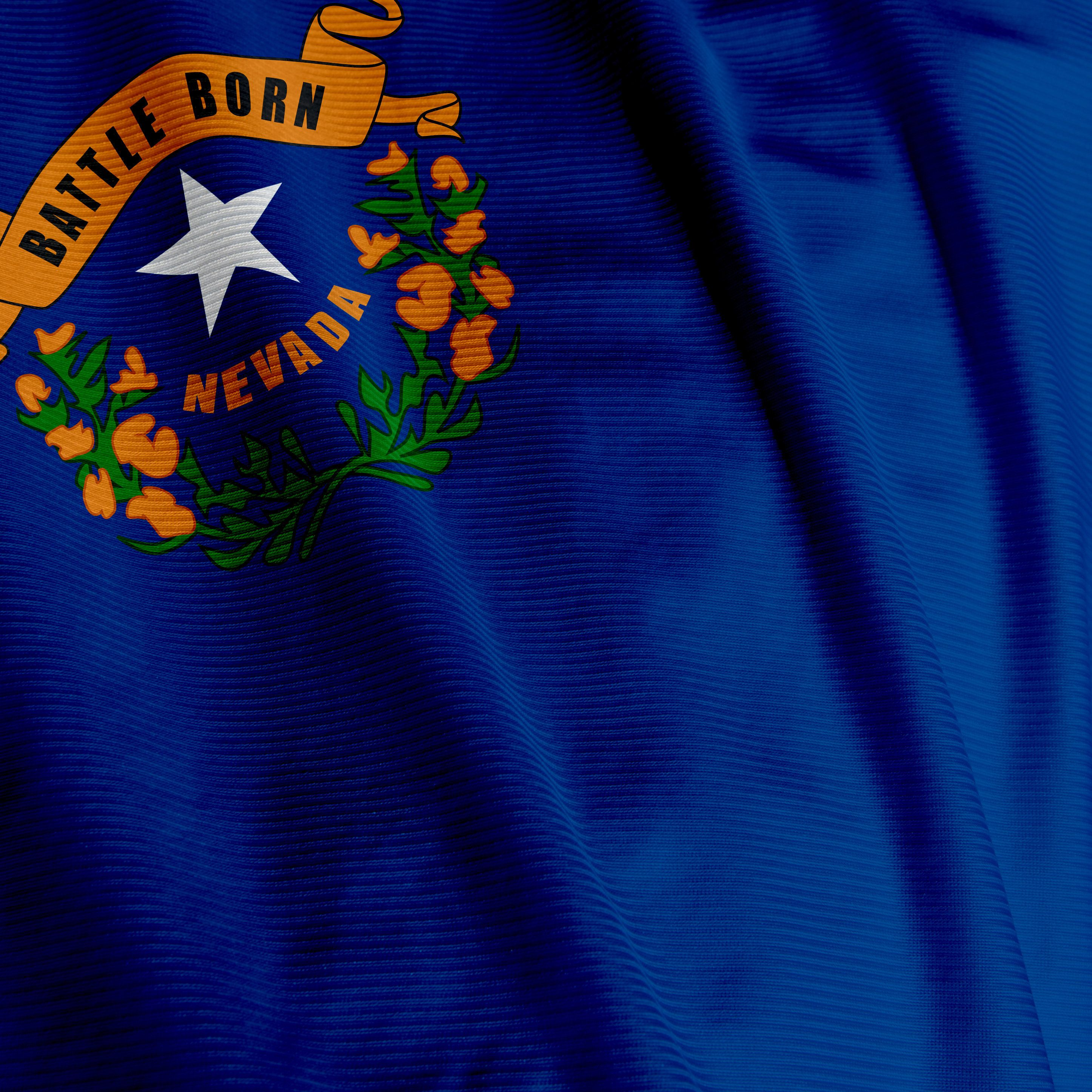 Close up of the flag of the US State of Nevada, square image