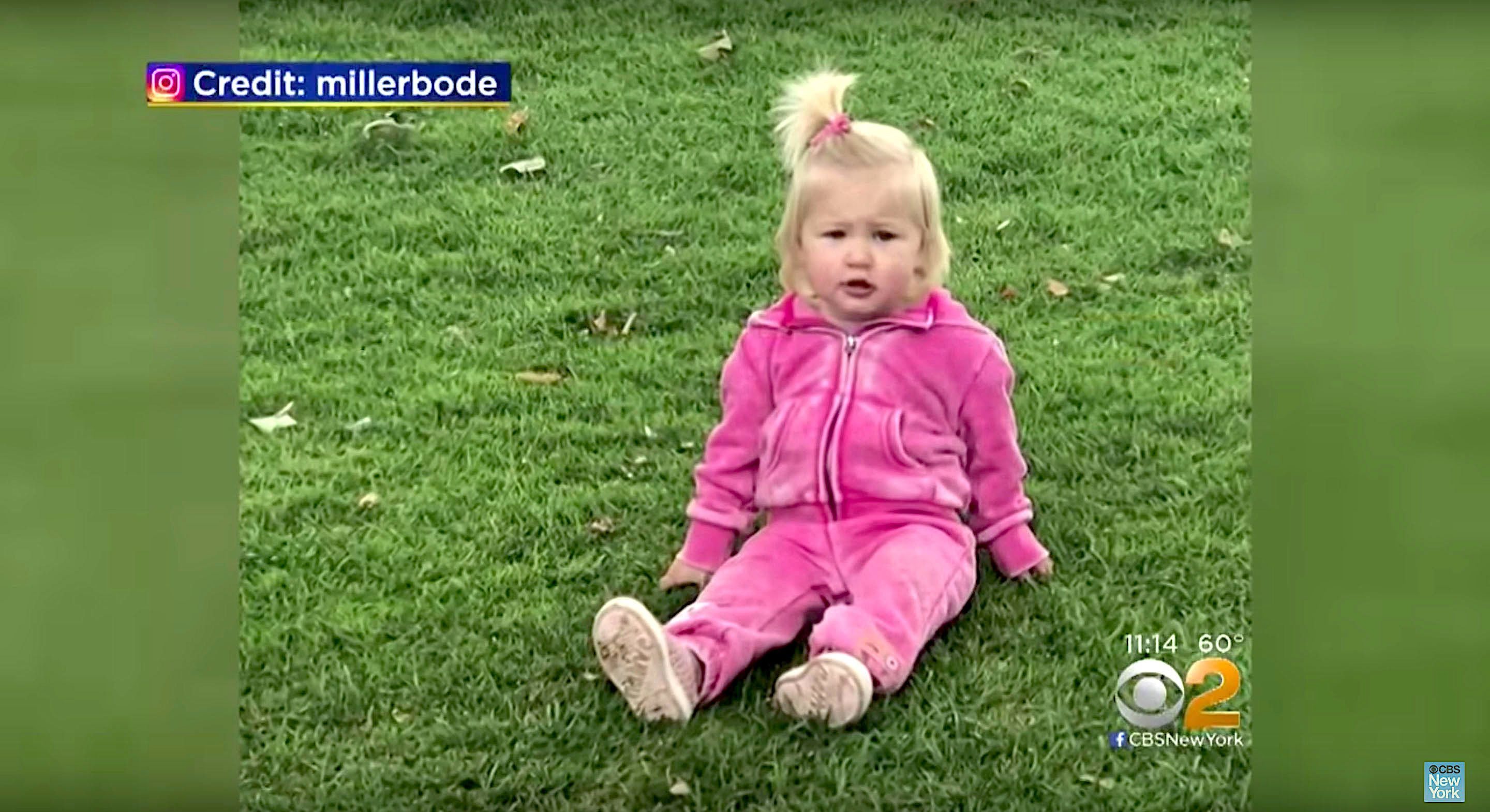 Emmeline Grier Miller the 19-month-old daughter of Bode Miller and Morgan Beck drowned