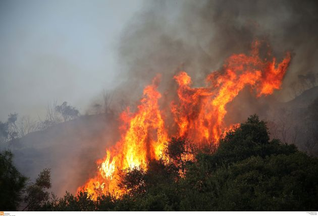 Υπό μερικό έλεγχο η φωτιά στην Ασωπία