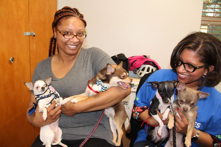 Cousins Stacey Jackson, left, and Sharon Hayes with Chihuahuas Bella, Snoopy, Chloe and Eleven at a nursing home on Chicago's