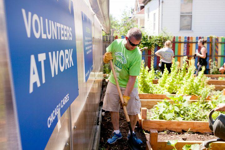Chicago Cares volunteers work in a community garden.