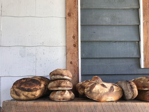How Sourdough Bread Is Helping People Eat Gluten