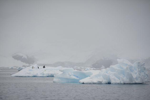 Η Ανταρκτική χάνει 219 δισεκατομμύρια τόνους πάγου το χρόνο την τελευταία