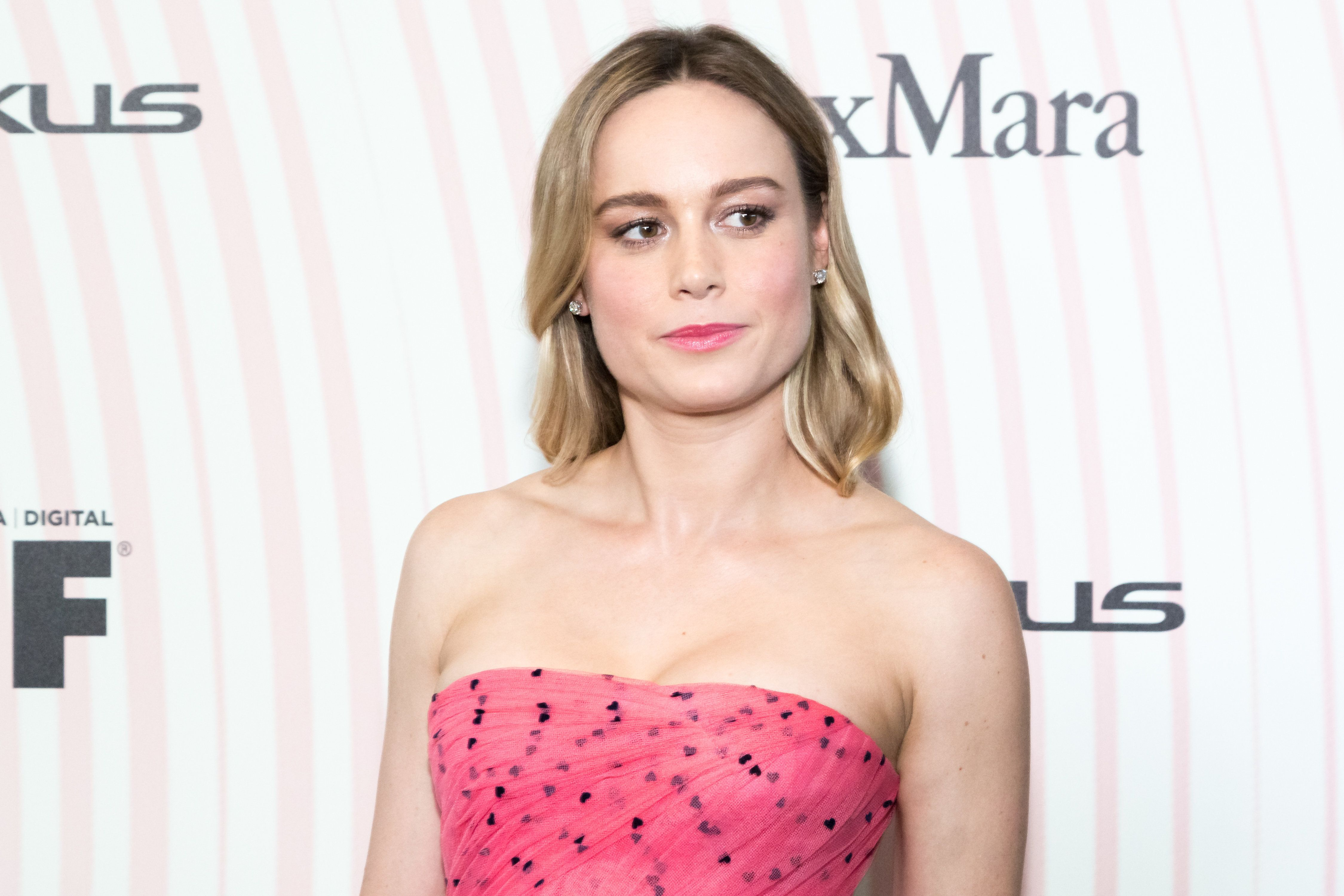 Brie Larson Calls For More Diversity Within Film