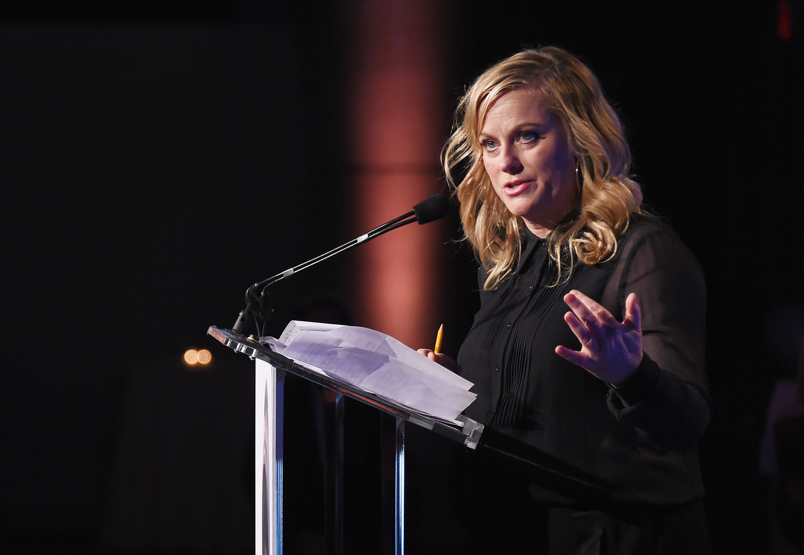 NEW YORK, NY - NOVEMBER 13:  Amy Poehler speaks onstage during the Worldwide Orphans 13th Annual Gala on November 13, 2017 at Cipriani Wall Street in New York City.  (Photo by Michael Loccisano/Getty Images for Worldwide Orphans)